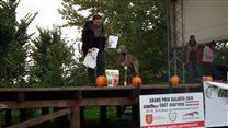 Halloween coursing in Galanta - Silverlake Ranch