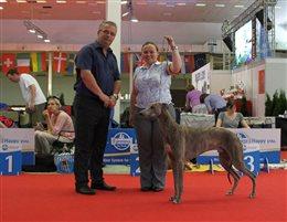 duoCACIB Nitra (International Dog Show)